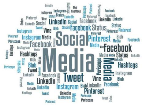 XING im Feld der Social Networks