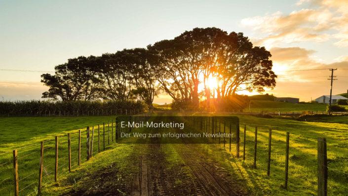 E-Mail-Marketing - Der Weg zum erfolgreichen Newsletter
