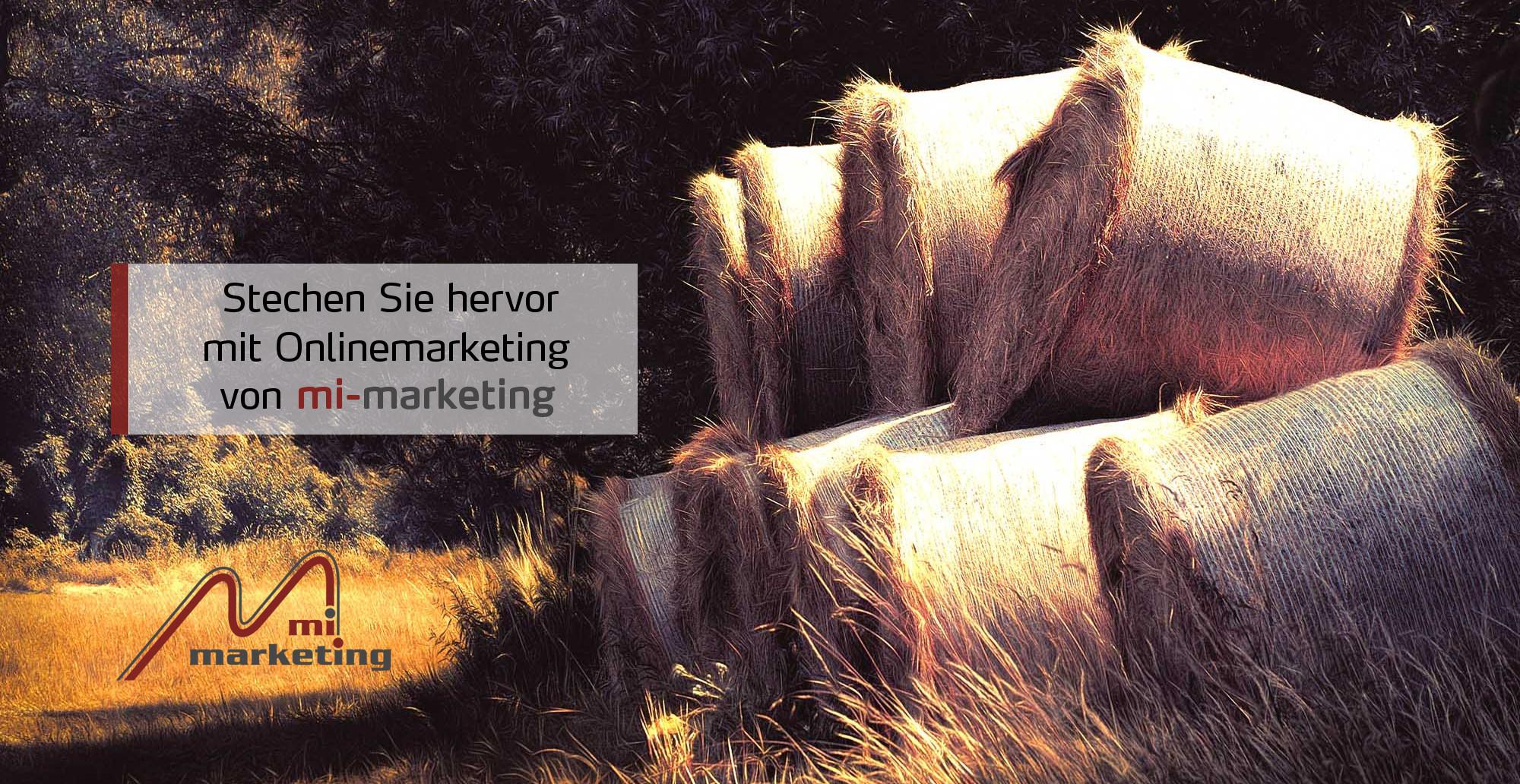Onlinemarketing von mi-marketing