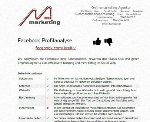 Überprüfung der Seiteninformationen, Bewertungen, Beitragsfrequenz u.v.m. einer Facebookseite